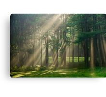 Heavenly Sunrise Landscape Canvas Print