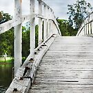 budgewoi bridge  by jane walsh