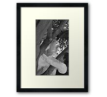 the look of LOVE in bw        #3097 Framed Print