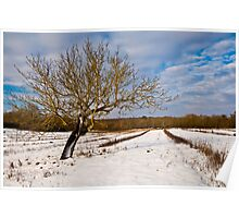 Chilly fields of winter Poster