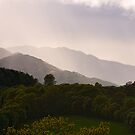 Rays on Misty Mountains by PigleT