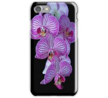 Purple Veined Orchid  iPhone Case/Skin