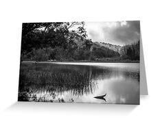 Lake Catani Greeting Card