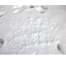 the snow wonder Photographic Print