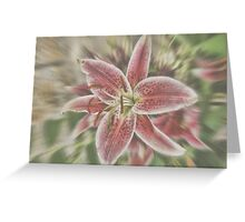 Pictures Of Lily Greeting Card