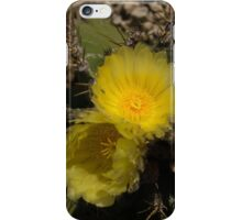 Gossamer Petals - Twin Cactus Blooms iPhone Case/Skin