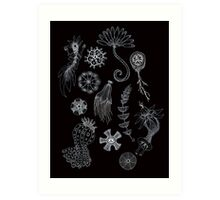 Sea Ballet in Black and White with Apologies to Ernst Haeckel Art Print