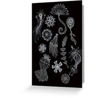 Sea Ballet in Black and White with Apologies to Ernst Haeckel Greeting Card