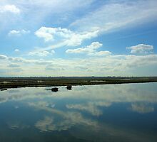 Clouds at the Wetlands  by arr333