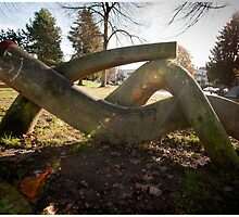 The Logman Cometh by Syx Langemann