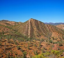 Flinders Ranges Cone Hill by Richard  Windeyer