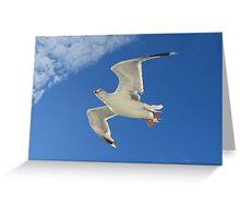 Wings of Dreams.... Greeting Card