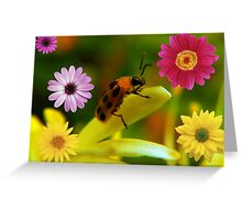 Its a bugs life Greeting Card