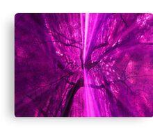 Purple mania Canvas Print