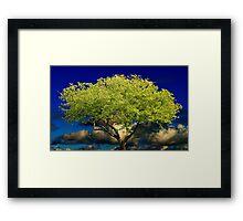 Tree of Wisdom Framed Print