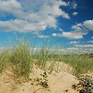 Dunes at North Norfolk beach, United Kingdom by Magdalena Warmuz-Dent