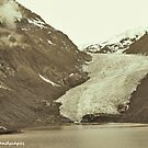 Landscape of Bear glacier by Erykah36