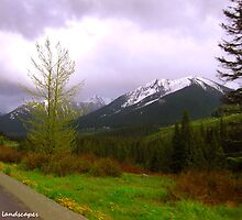 Alaskan scenery by Erykah36