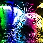 COLOURFUL FRACTAL LIGHT BENGAL TIGER by Christopher McCabe