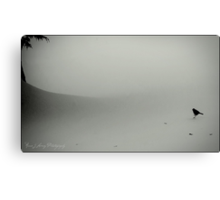Little Snow Bird Canvas Print