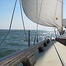 Sailing Day II by Jennie L. Richards