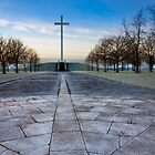 Papal Cross - Dublin Ireland Christian Landmark by Mark Tisdale