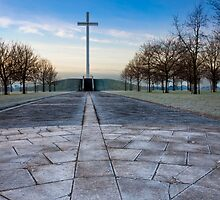 Papal Cross - Dublin Ireland Landmark by Mark Tisdale