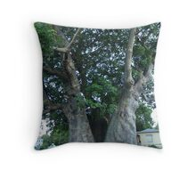 Grove Place Baobab Tree Throw Pillow