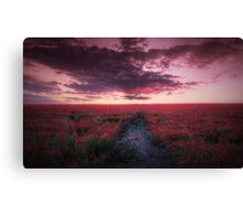 Poppy Field Delight Canvas Print