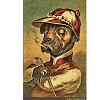 Greeting card - Vintage Dogs 1 Photographic Print