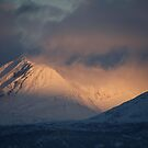 Mountain Light by Bodil Kristine  Fagerthun