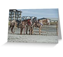 No One To Ride Us - Ocean Shores, WA Greeting Card