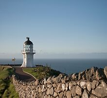 Cape Reinga Lighthouse by Barrie Turpin