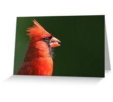 Cardinal Profile Greeting Card