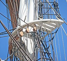 Polly Woodside Mast by kalaryder