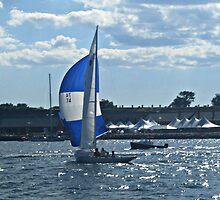 Deep Blue Sails On The Deep Blue, Narragansett Bay by Jane Neill-Hancock