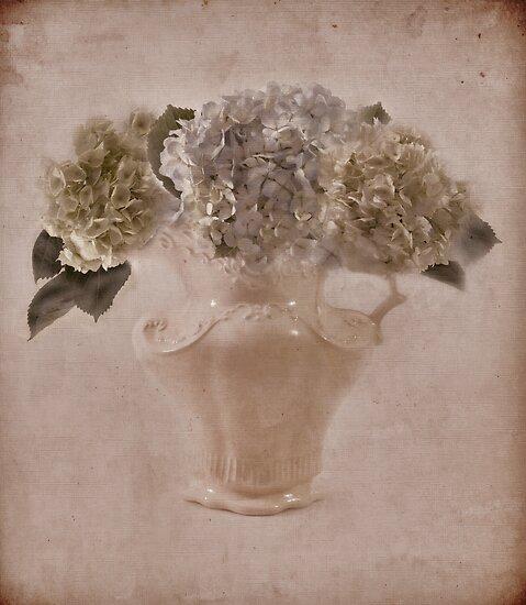 Hydrangea Vintage Beauty by Sandra Foster