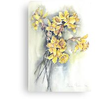 Bunch of Daffodils Canvas Print