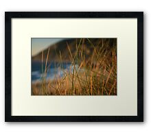 Bokeh grass  Framed Print