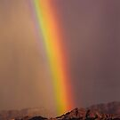 Rainbow After the Rain by Jill Fisher