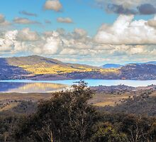 A Golden Hill by Mark  Lucey