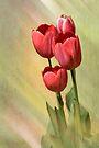 Spring Red by KBritt
