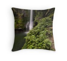 Kaiate Fern Gully steps Throw Pillow