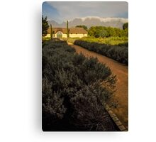 Vergelegen Winery  Canvas Print