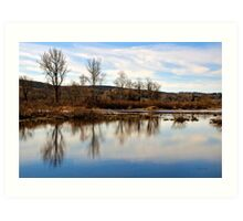 Trees on Tranquil Lake Art Print