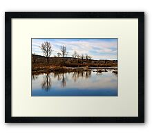 Trees on Tranquil Lake Framed Print