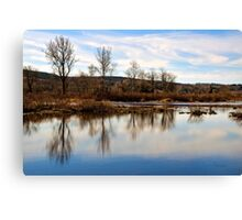 Trees on Tranquil Lake Canvas Print