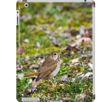 Wild Bird Hermit Thrush iPad Case/Skin