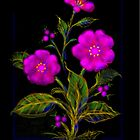 'Old Fashioned Pink Moss Rose', Greeting Card or Small Print by luvapples downunder/ Norval Arbogast