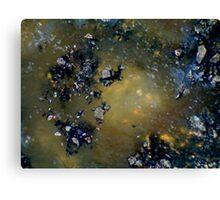 Asteroid Field Canvas Print